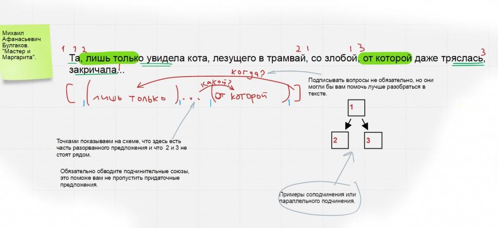схема сложного предложения